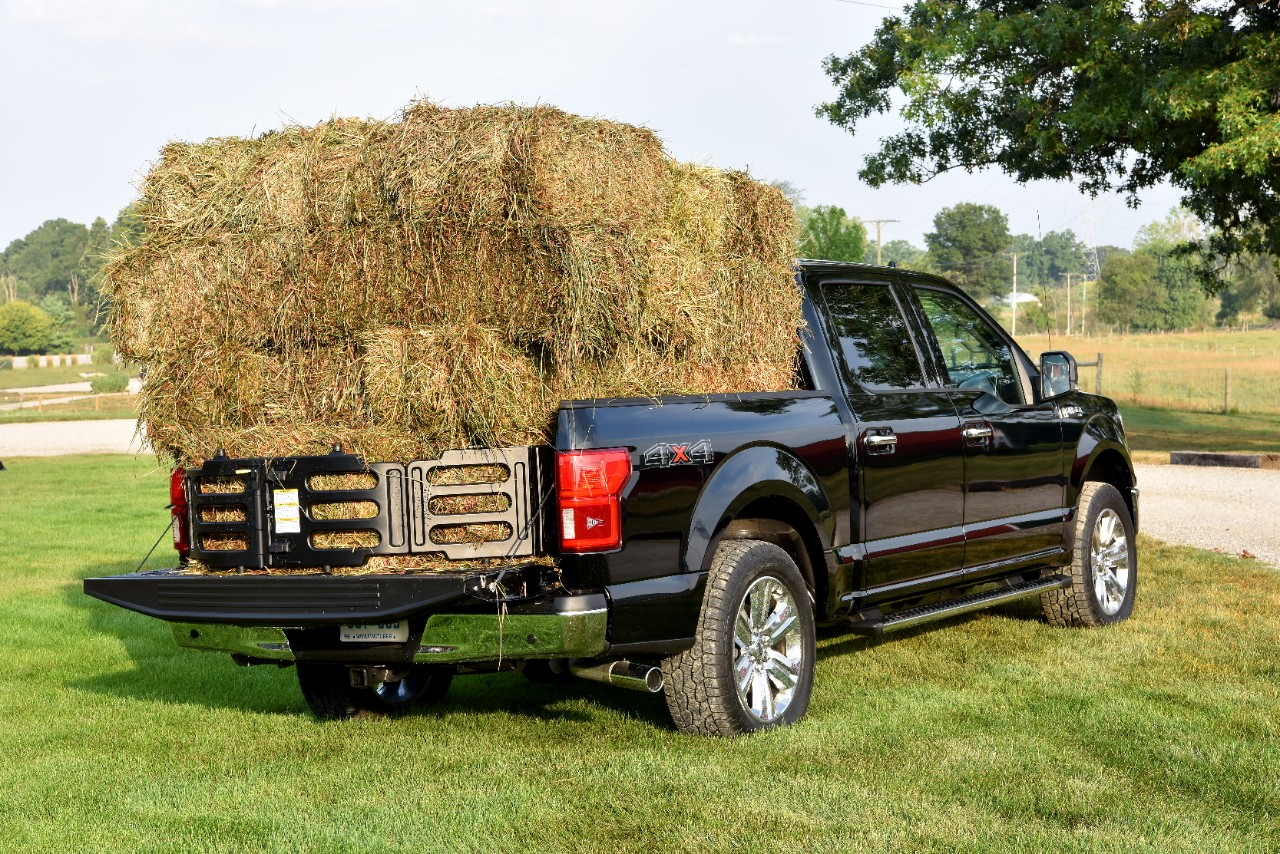 2020 Ford F150_rear_right